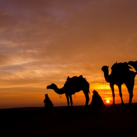Marrakech Sunset Camel Ride in Desert with Diner