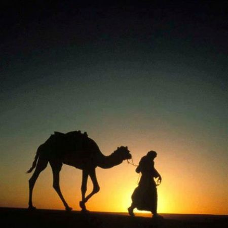 Marrakech Sunset Camel Ride