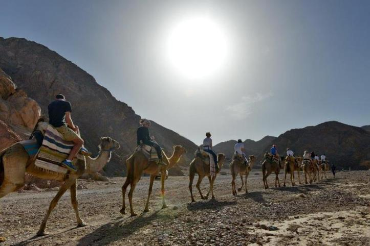 Marrakech Sunset Camel Ride in Desert with Diner