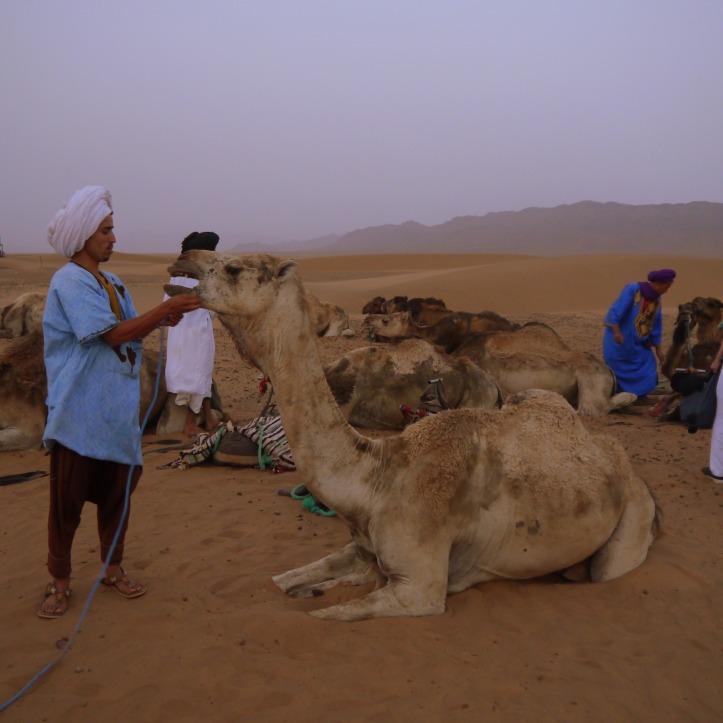 2 Days 1 Night Zagora Desert Trip from Marrakech